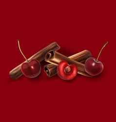 Cinnamon and cherry vector