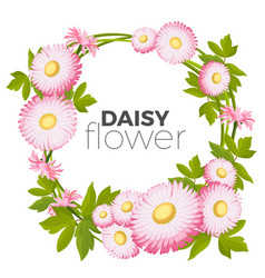daisy flowers frame with pink blossoms and green vector image