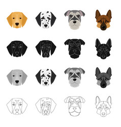 dalmatian terrier shepherd and other web icon in vector image