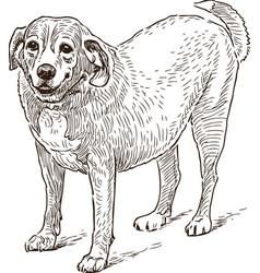 Guard dog sketch vector