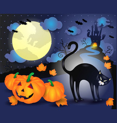 halloween with black cat and pumpkins vector image