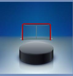 hockey puck and gates vector image