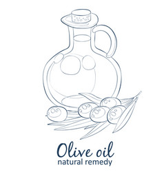 olive oil in bottle cartoon icon isolated vector image