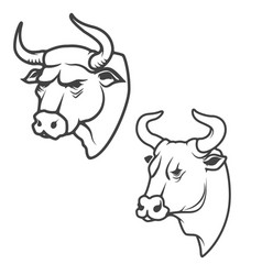set of bull heads isolated on white background vector image vector image