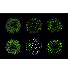 beautiful bright fireworks set isolated on black vector image