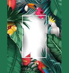 birds collection and tropical plants background vector image
