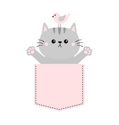 Gray cat bird in pink pocket holding hands up vector