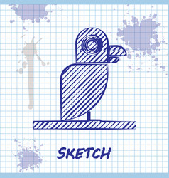 Sketch line pirate parrot icon isolated on white vector