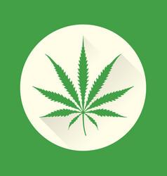 color cannabis marijuana vector image vector image