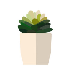 green house plant in pot leaf flower flat vector image vector image