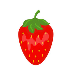 colorful juicy red strawberry vector image