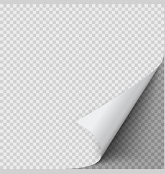 curled corner paper empty sheet paper with vector image