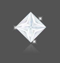Diamond Princess vector