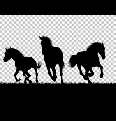 Horse silhouette on grass background vector