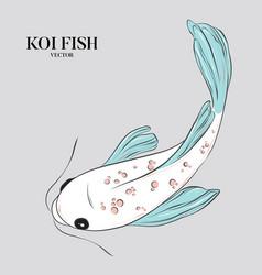 koi fish ilustration japanese chinese oriental vector image