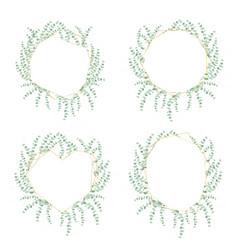 Silver dollar eucalyptus leaf wreath with luxury vector
