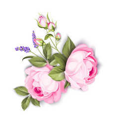 wedding flowers bouquet color bud garland vector image