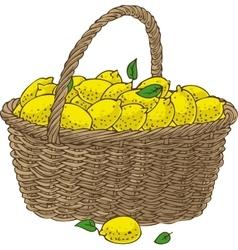 Wicker Basket with Ripe Yellow Lemons vector image