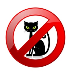 No cats allowed permission sign vector image vector image