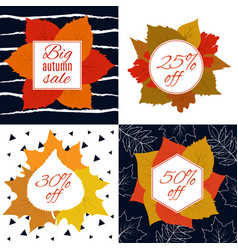 autumn sale fall leaves with discount vector image