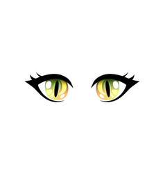bright beautiful green eyes with light reflections vector image
