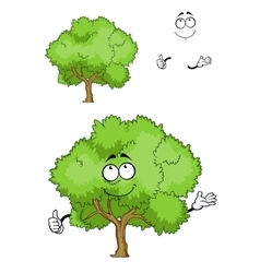Cartoon green tree character with thumb up vector image