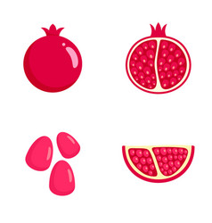 Pomegranate juice seeds icons set flat style vector