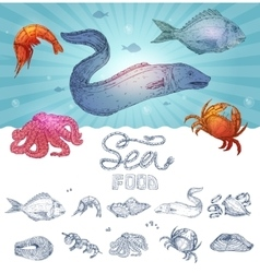 Seafood Hand Drawn Concept vector image vector image