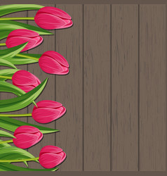 spring banner with pink blooming tulip vector image