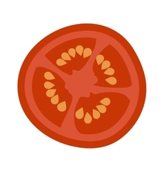 Tomato slice isolated vector