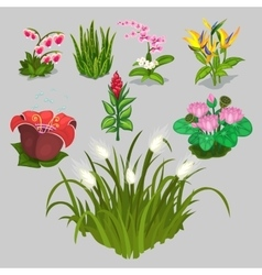 Big collection of different flowers vector