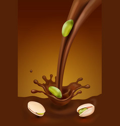 chocolate splash and pistachio vector image