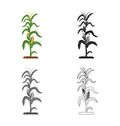 Isolated object of greenhouse and plant sign set vector
