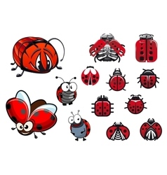 Ladybugs ladybirds and beetles cartoon insects vector