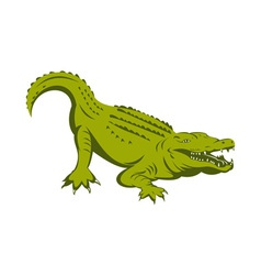 Alligator head vector