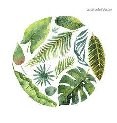 Watercolor card of tropical leaves and vector