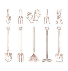 hand drawn garden tools set vector image