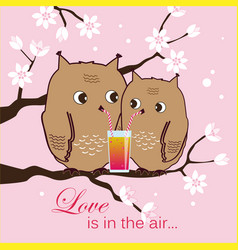 Cute two owls sitting on a tree owlets drinking vector