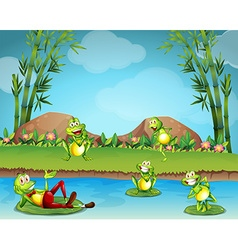 Five frogs living by the pond vector image