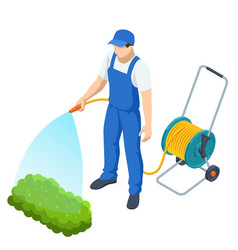 agricultural work isometric farmer watering vector image