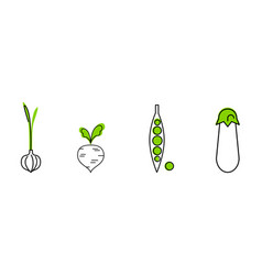 fresh vegetables line icons set garlic green vector image