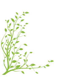 green tree branch branch silhouette isolated vector image
