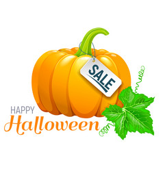 halloween beautiful pumpkin sale vector image