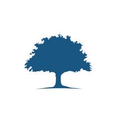 oak tree icon logo vector image