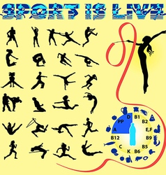 silhouettes of different sports with healthy food vector image vector image
