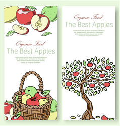 Best apples fruit collection set banners vector