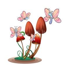 Butterflies surrounding the plants vector