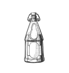 drawn blank beer bottle with bar stopper vector image