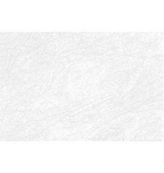 light gray skin texture genuine or faux white vector image