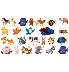 Set isolated theme wild animals vector